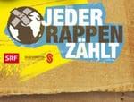 Donation based Crowdfunding (Crowddonating) in der Schweiz swisspeers